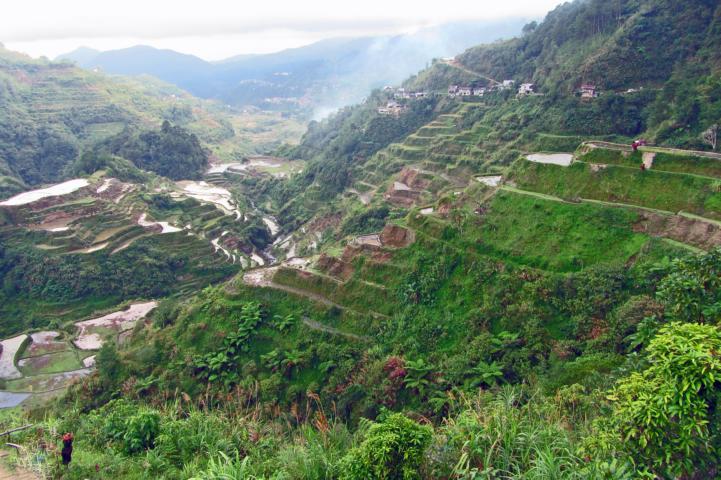 Weltwunder Reisterrassen Philippinen